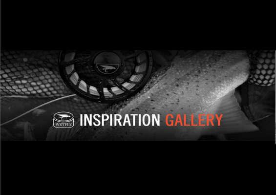 Ofertas de Wetfly, Inspiration