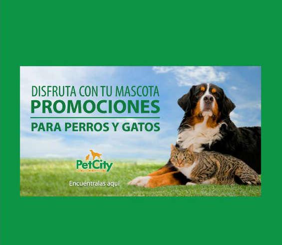 Ofertas de Pet City, promo perros y gatos