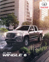 Wingle 6